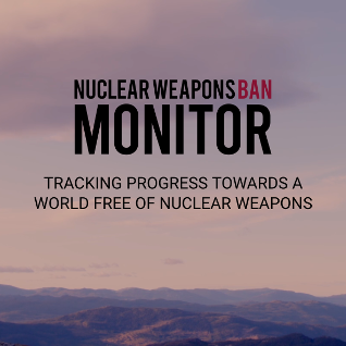 Nuklearwaffenfreie Welt: Fortschrittsbericht 2019